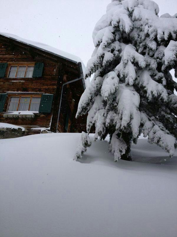 Bild vom Haus im Schnee